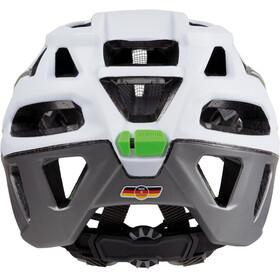 Alpina Garbanzo Helmet white-titanium-green